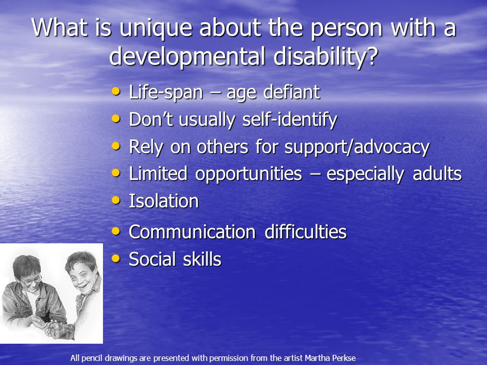 What is unique about the person with a developmental disability.