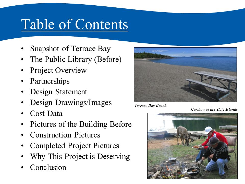 Table of Contents Snapshot of Terrace Bay The Public Library (Before) Project Overview Partnerships Design Statement Design Drawings/Images Cost Data Pictures of the Building Before Construction Pictures Completed Project Pictures Why This Project is Deserving Conclusion Terrace Bay Beach Caribou at the Slate Islands