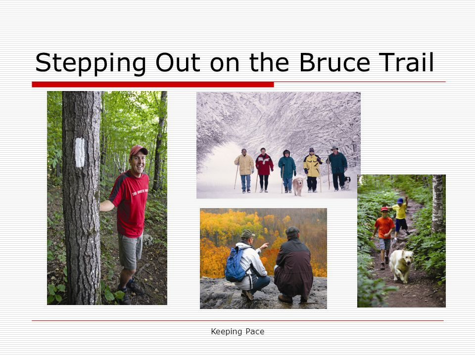 Keeping Pace Stepping Out on the Bruce Trail