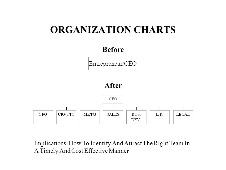 ORGANIZATION CHARTS Entrepreneur/CEO Before After Implications: How To Identify And Attract The Right Team In A Timely And Cost Effective Manner