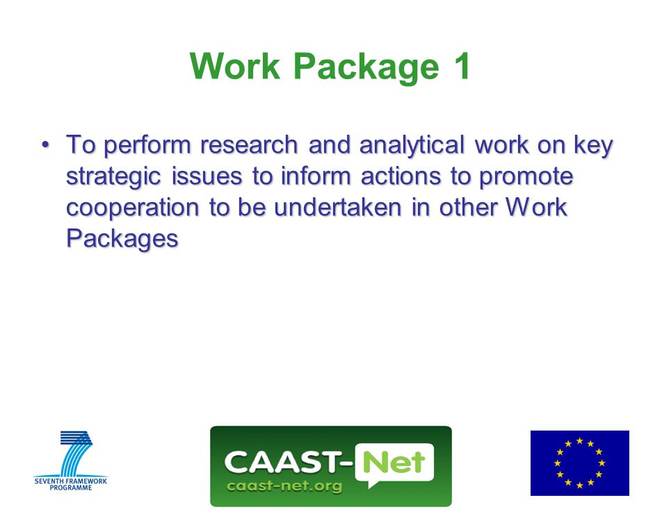 Network for the Coordination and Advancement of Sub-Saharan Africa-Europe Science and Technology Cooperation GRANT AGREEMENT NUMBER 212625 www.caast-net.org Wednesday, 30 July 2008 7 Work Package 1 To perform research and analytical work on key strategic issues to inform actions to promote cooperation to be undertaken in other Work PackagesTo perform research and analytical work on key strategic issues to inform actions to promote cooperation to be undertaken in other Work Packages