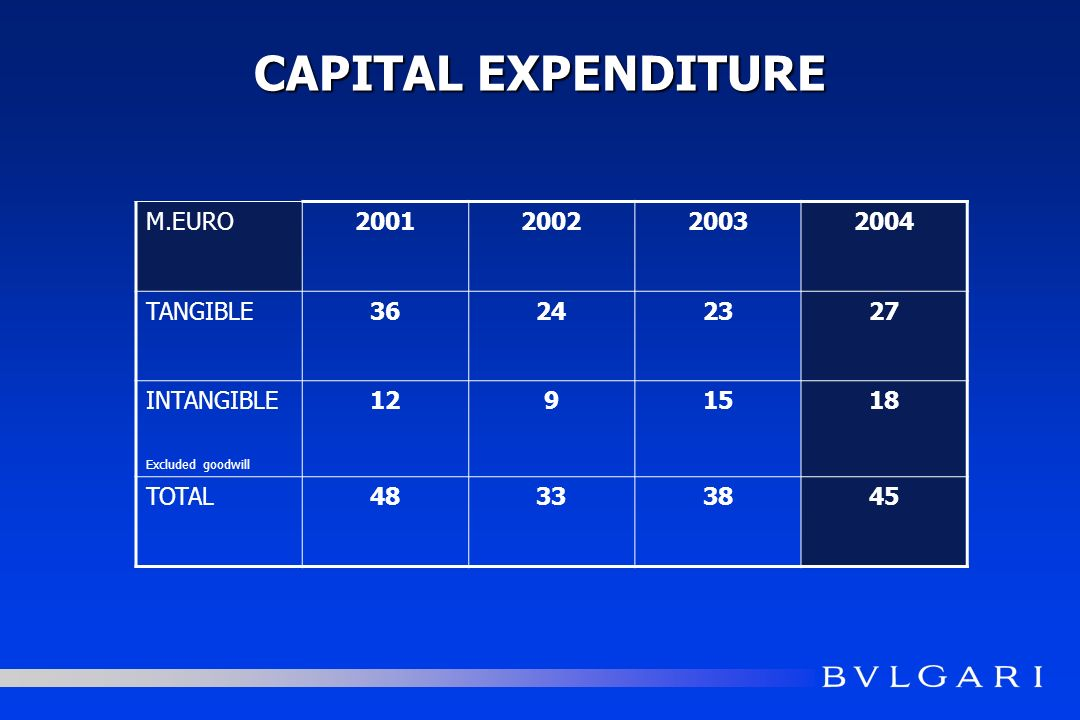 CAPITAL EXPENDITURE M.EURO2001200220032004 TANGIBLE36242327 INTANGIBLE Excluded goodwill 1291518 TOTAL48333845