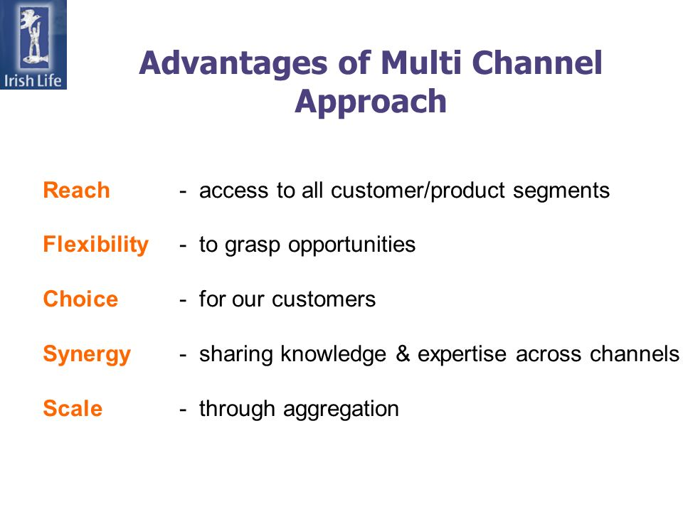 Advantages of Multi Channel Approach Reach- access to all customer/product segments Flexibility- to grasp opportunities Choice- for our customers Syne