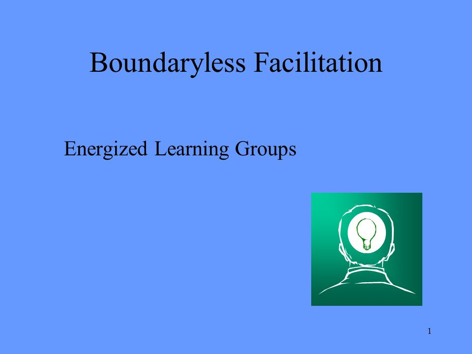 1 Boundaryless Facilitation Energized Learning Groups