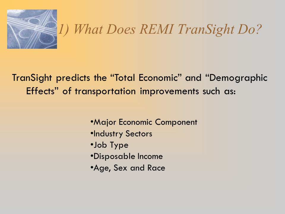 1) What Does REMI TranSight Do.