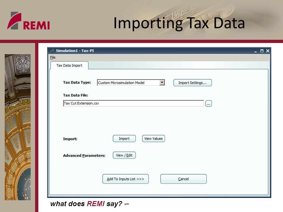 what does REMI say sm Importing Tax Data