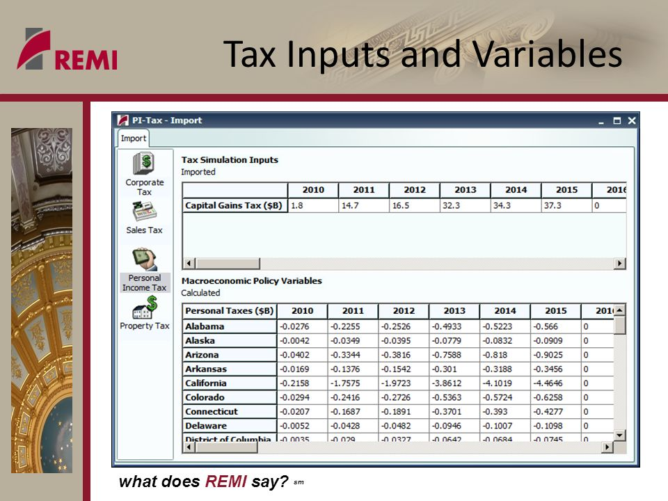 what does REMI say sm Tax Inputs and Variables