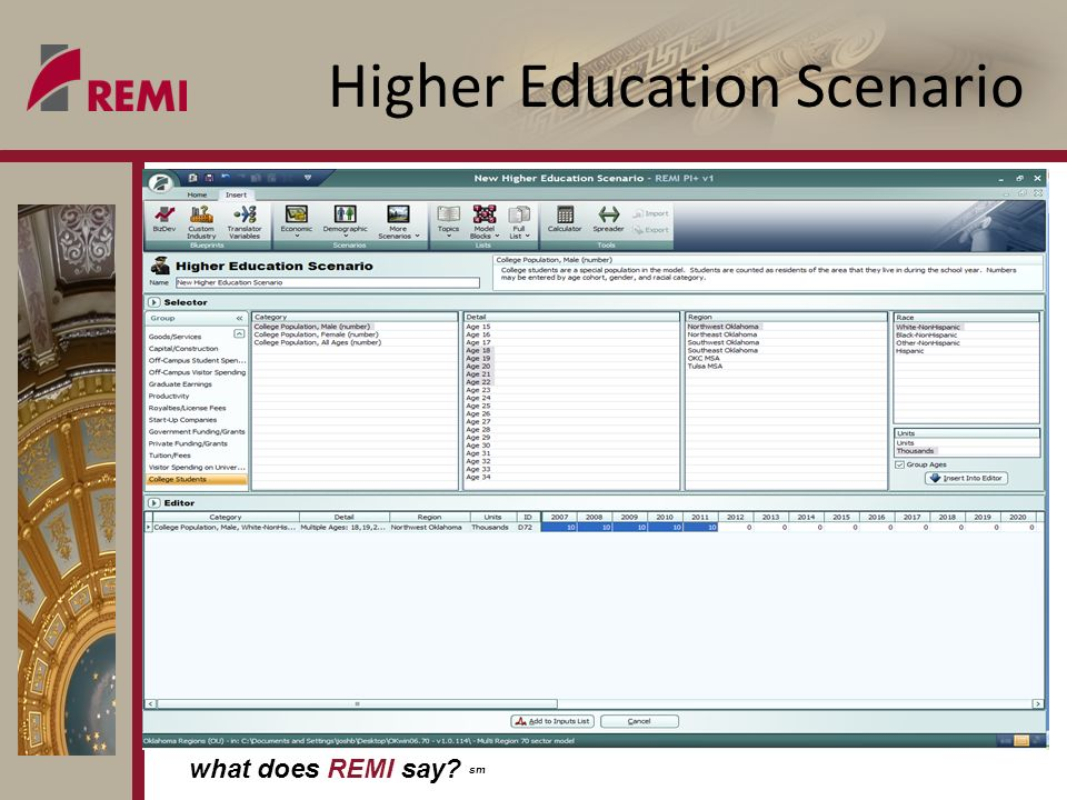what does REMI say sm Higher Education Scenario