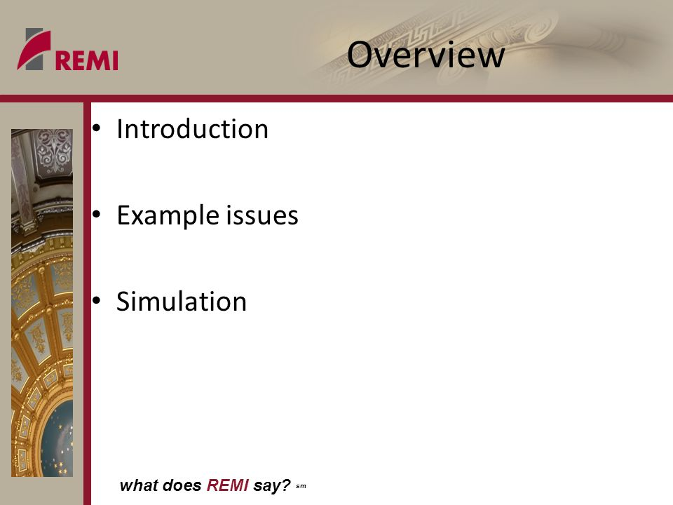 what does REMI say? sm Overview Introduction Example issues Simulation