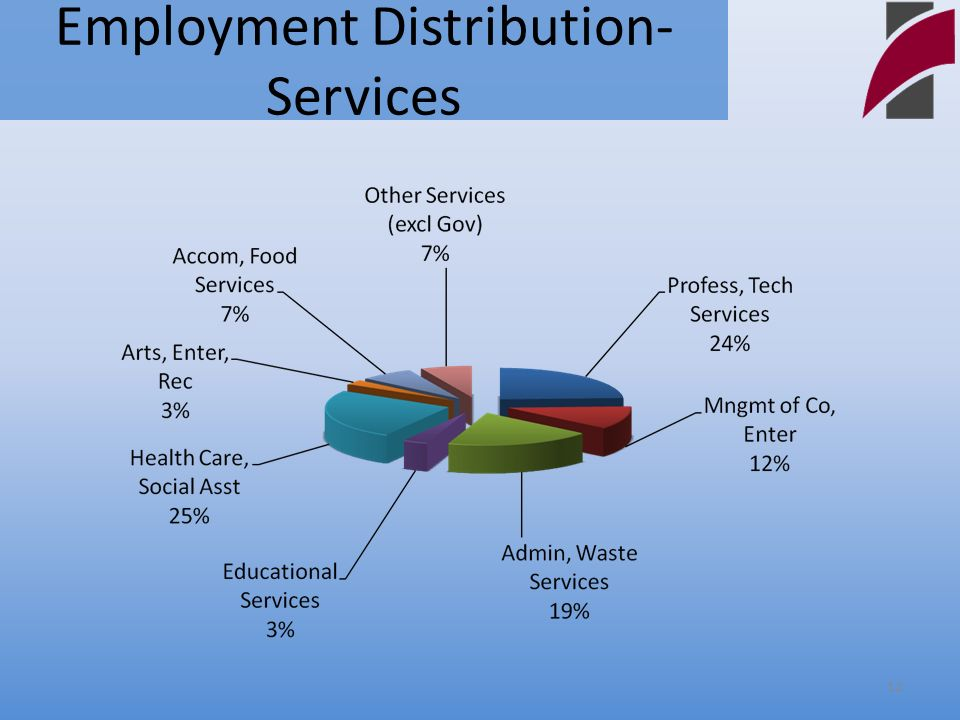 Employment Distribution- Services 12