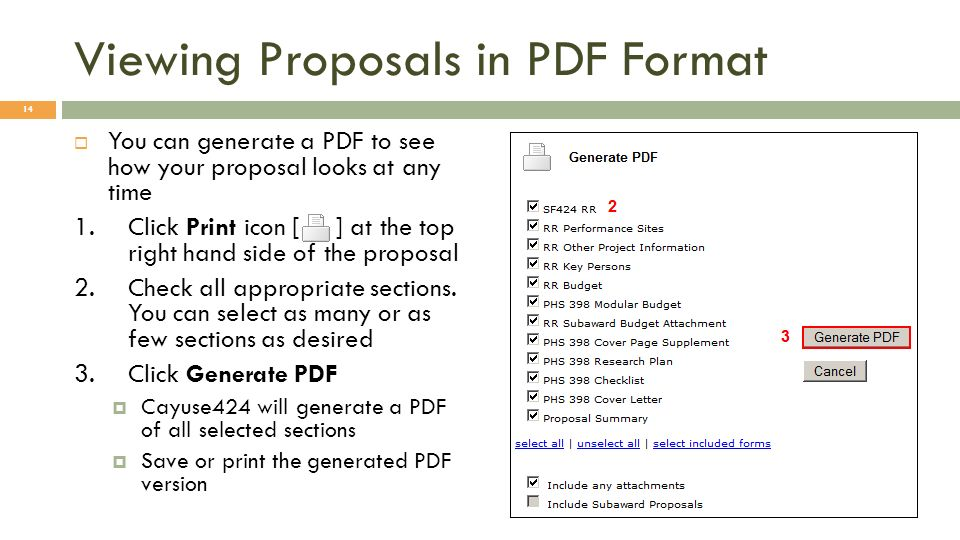 Viewing Proposals in PDF Format You can generate a PDF to see how your proposal looks at any time 1.Click Print icon [ ] at the top right hand side of the proposal 2.Check all appropriate sections.