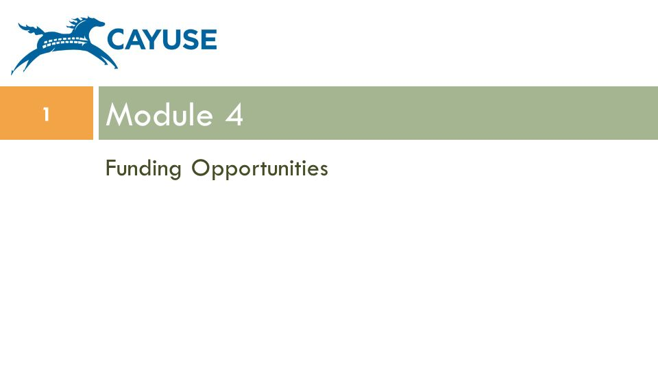 Funding Opportunities Module 4 1