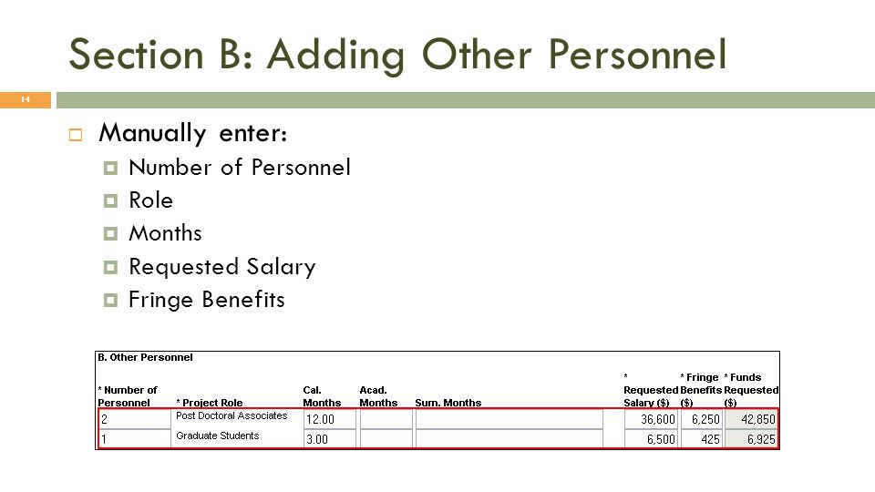 Section B: Adding Other Personnel 14 Manually enter: Number of Personnel Role Months Requested Salary Fringe Benefits