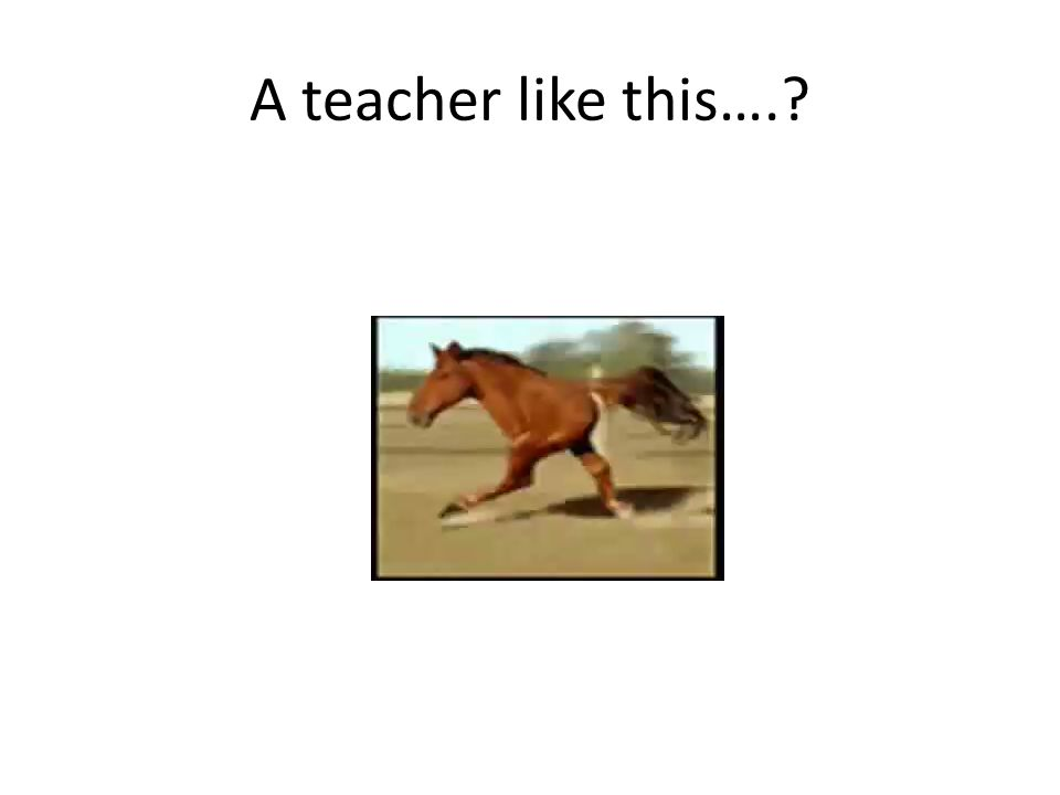 A teacher like this….?