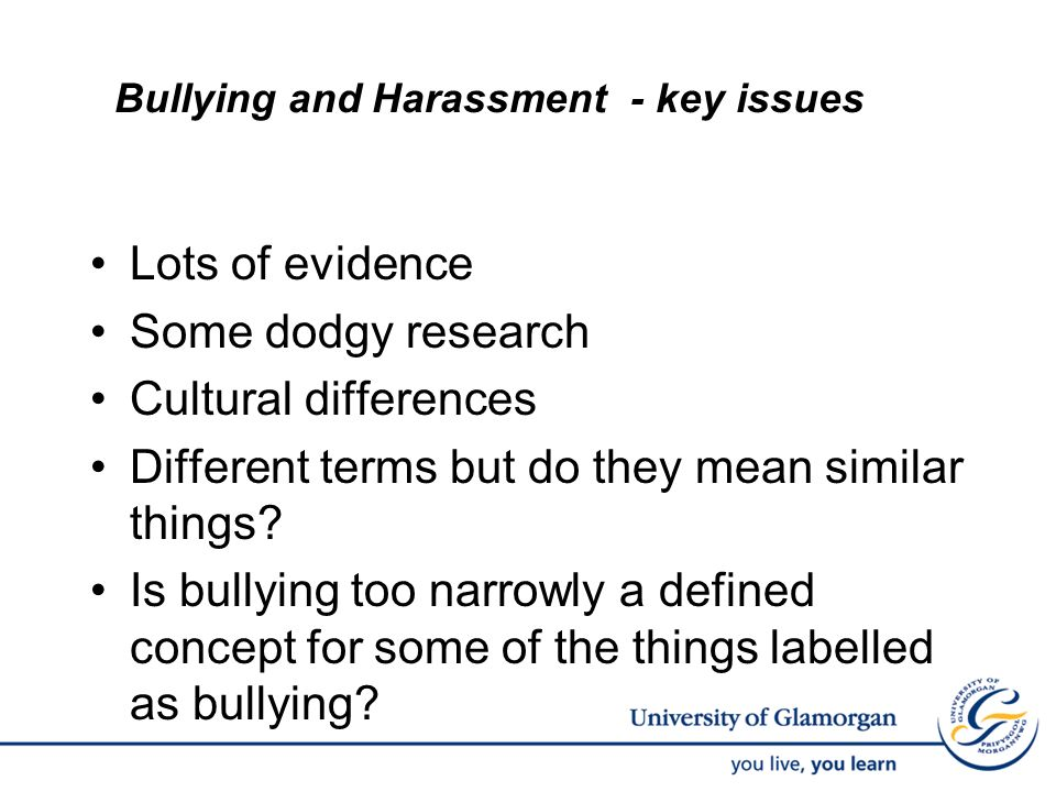 Bullying and Harassment - key issues Lots of evidence Some dodgy research Cultural differences Different terms but do they mean similar things? Is bul
