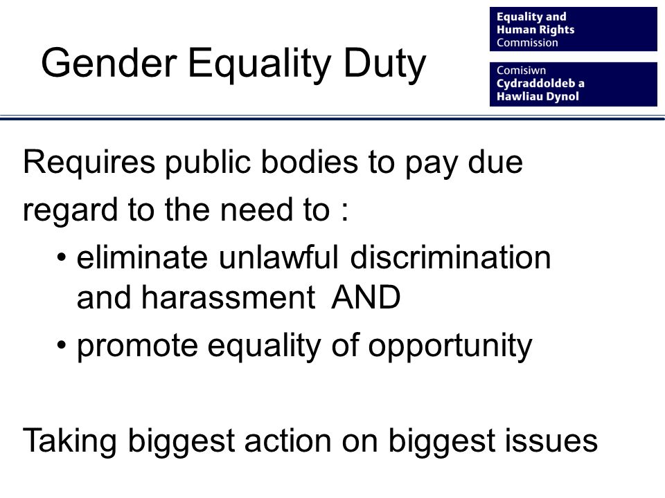 Gender Equality Duty Requires public bodies to pay due regard to the need to : eliminate unlawful discrimination and harassment AND promote equality o