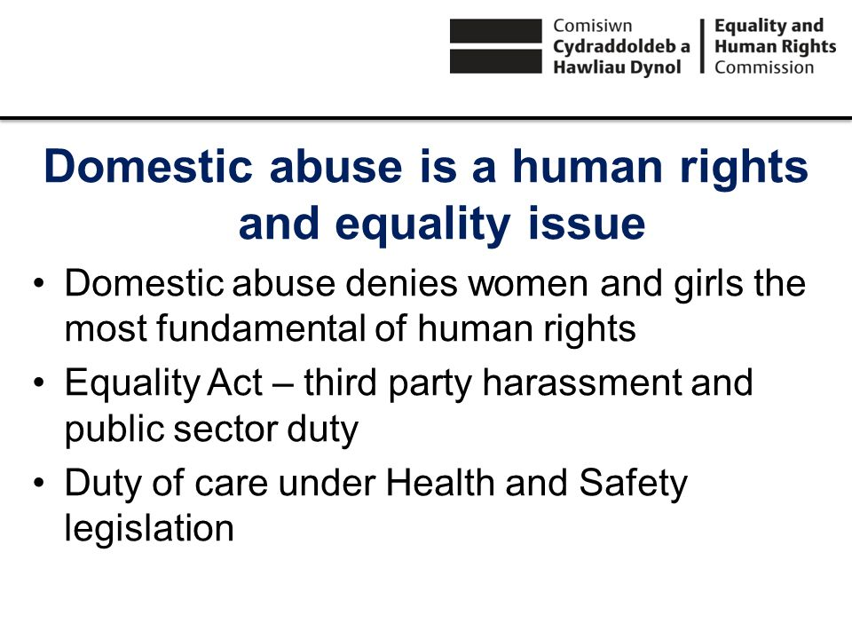 Domestic abuse is a human rights and equality issue Domestic abuse denies women and girls the most fundamental of human rights Equality Act – third pa