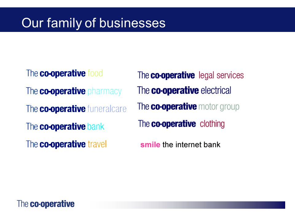 Our family of businesses