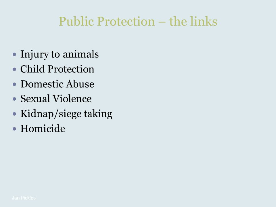 Public Protection – the links Injury to animals Child Protection Domestic Abuse Sexual Violence Kidnap/siege taking Homicide Jan Pickles