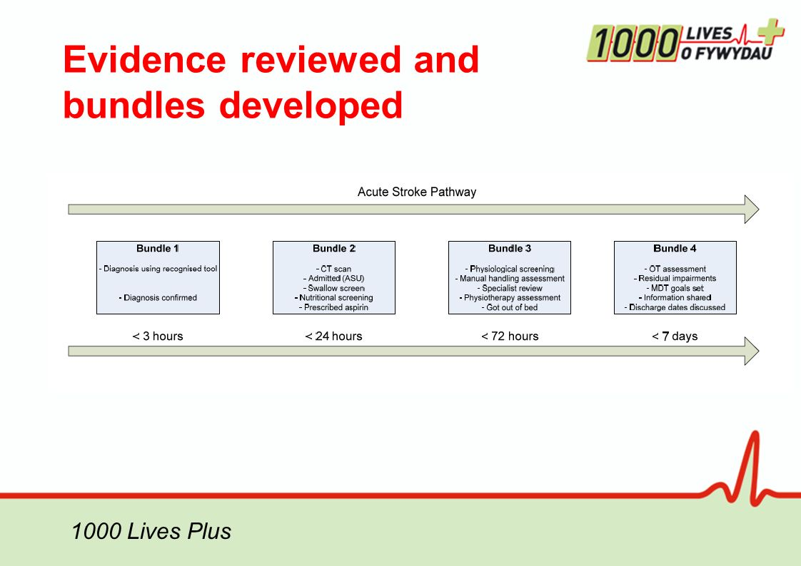 Evidence reviewed and bundles developed 1000 Lives Plus