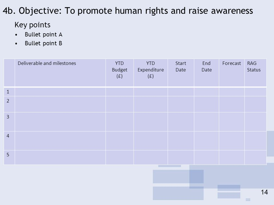 4b. Objective: To promote human rights and raise awareness Key points Bullet point A Bullet point B Deliverable and milestonesYTD Budget (£) YTD Expen