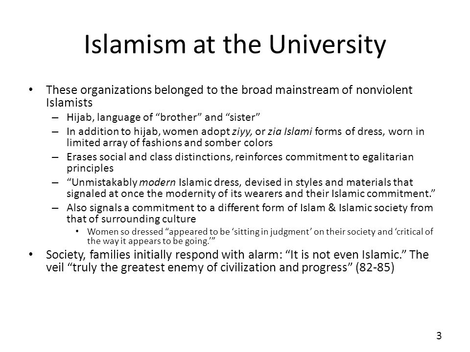 Islamism at the University These organizations belonged to the broad mainstream of nonviolent Islamists – Hijab, language of brother and sister – In a