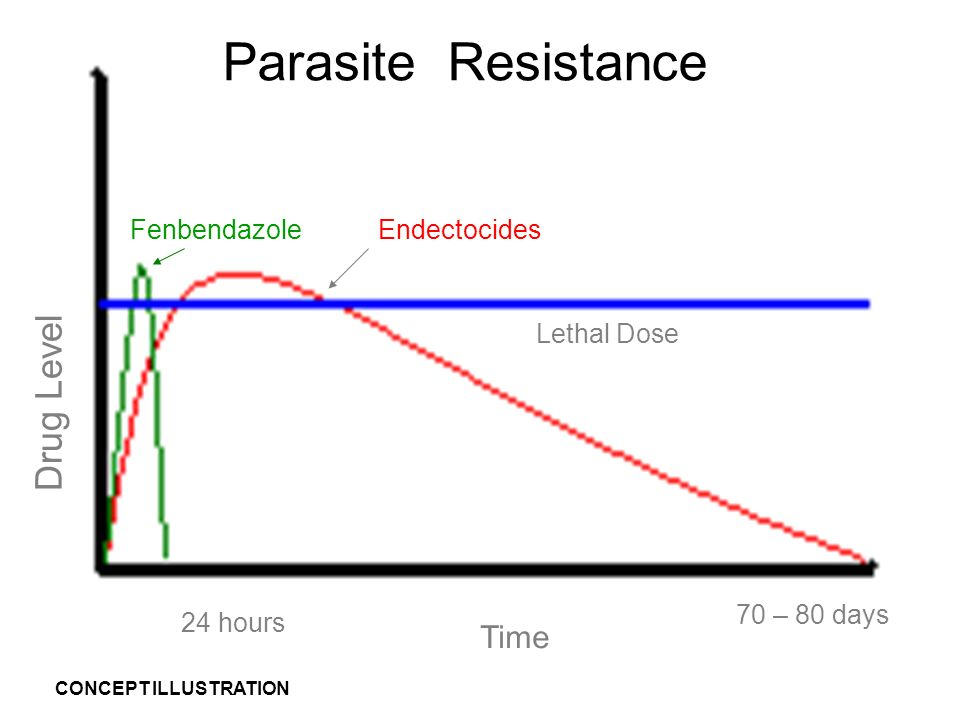 Introduction Drug Level Time 70 – 80 days Lethal Dose EndectocidesFenbendazole 24 hours Parasite Resistance CONCEPT ILLUSTRATION