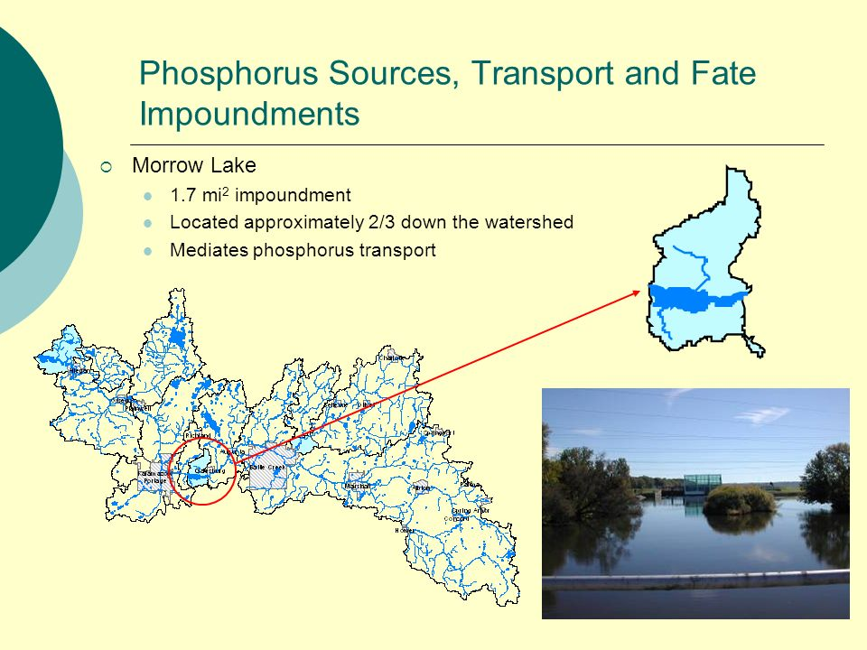 Phosphorus Sources, Transport and Fate Impoundments Morrow Lake 1.7 mi 2 impoundment Located approximately 2/3 down the watershed Mediates phosphorus transport