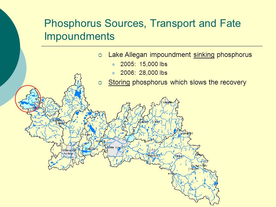 Phosphorus Sources, Transport and Fate Impoundments Lake Allegan impoundment sinking phosphorus 2005: 15,000 lbs 2006: 28,000 lbs Storing phosphorus which slows the recovery