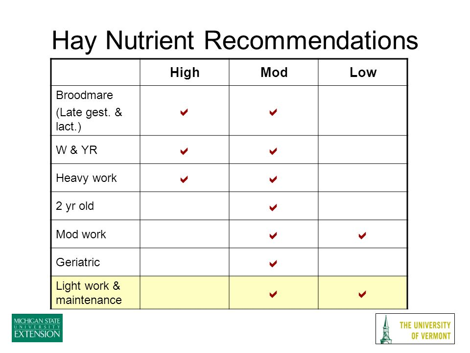 Hay Nutrient Recommendations HighModLow Broodmare (Late gest.