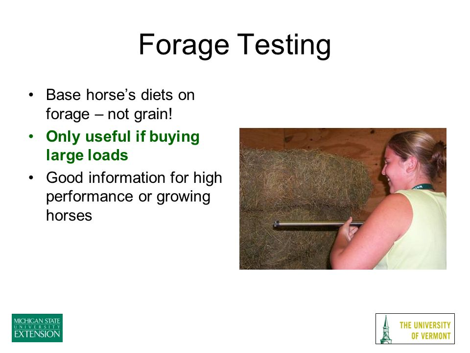 Forage Testing Base horses diets on forage – not grain.