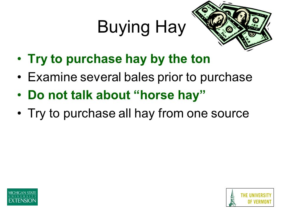 Buying Hay Try to purchase hay by the ton Examine several bales prior to purchase Do not talk about horse hay Try to purchase all hay from one source
