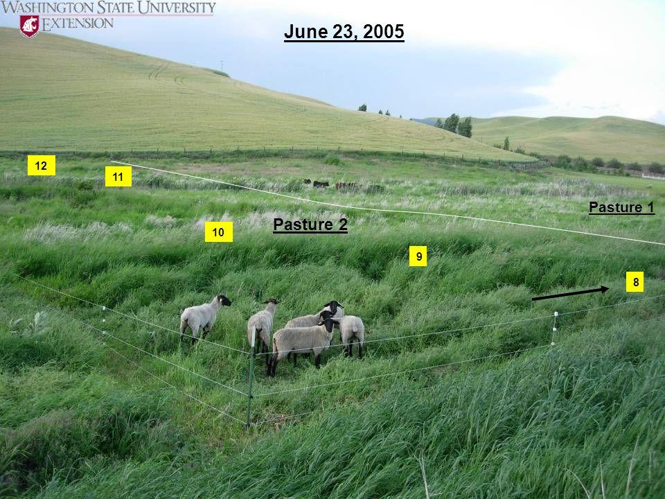 8 9 10 11 12 June 23, 2005 Pasture 2 Pasture 1
