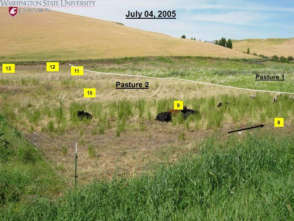 8 9 10 11 12 13 July 04, 2005 Pasture 2 Pasture 1