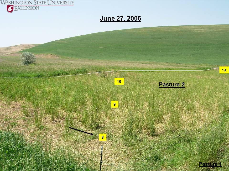 June 27, 2006 Pasture 2 Pasture 1 8 9 10 13