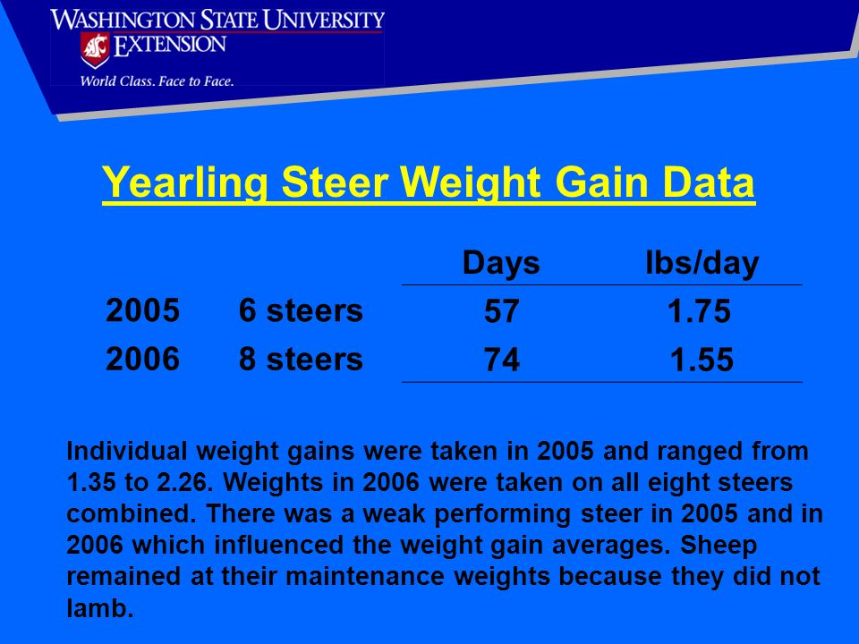 Dayslbs/day 20056 steers57 1.75 20068 steers741.55 Yearling Steer Weight Gain Data Individual weight gains were taken in 2005 and ranged from 1.35 to