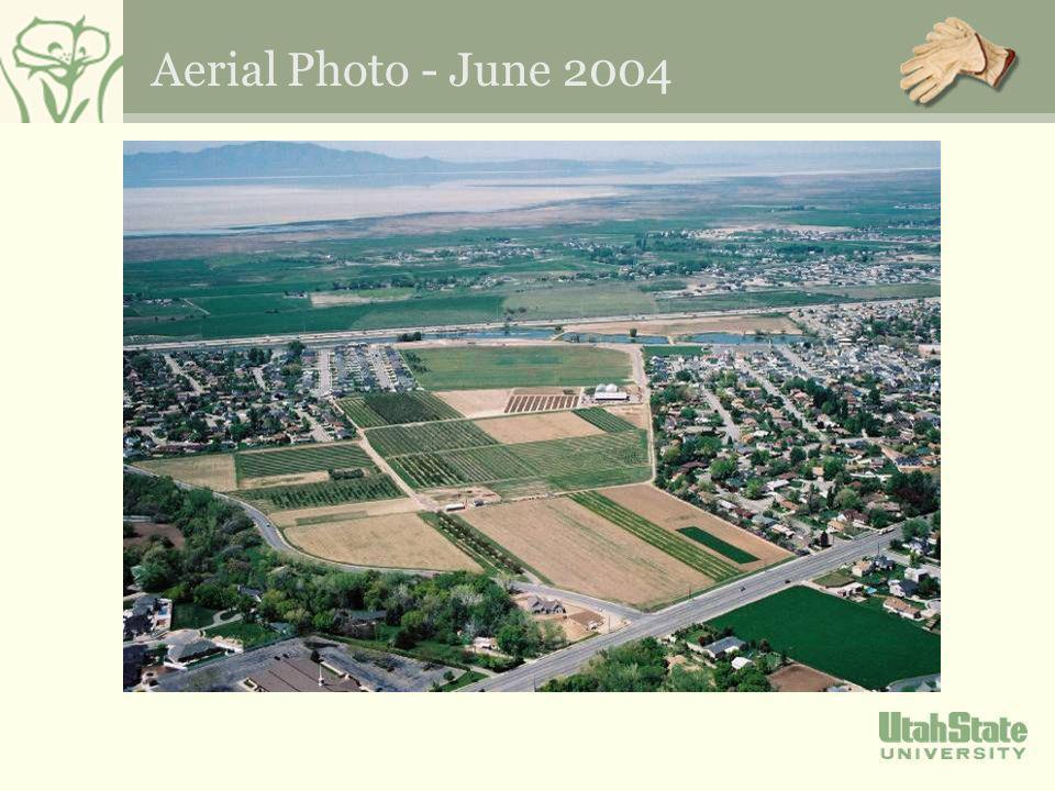Aerial Photo - June 2004