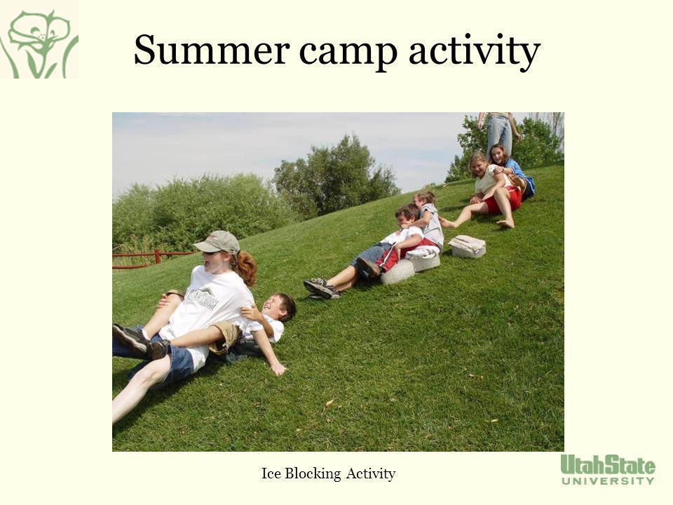 Summer camp activity Ice Blocking Activity
