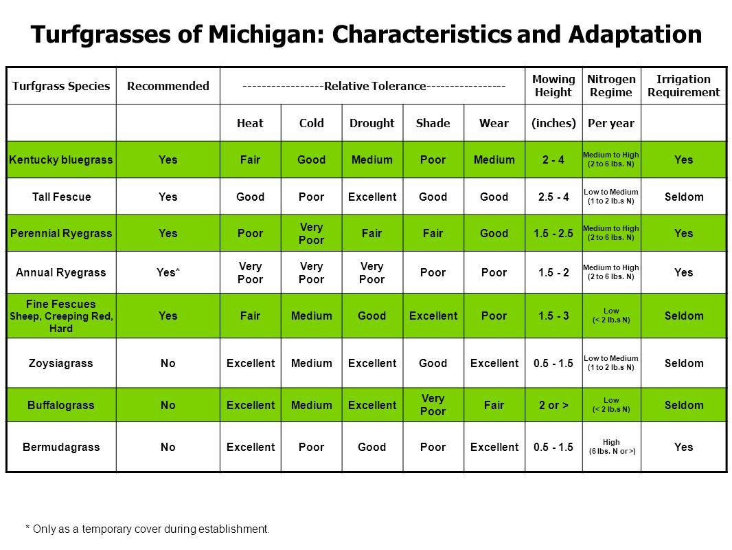 Turfgrasses of Michigan: Characteristics and Adaptation Turfgrass SpeciesRecommended -----------------Relative Tolerance----------------- Mowing Height Nitrogen Regime Irrigation Requirement HeatColdDroughtShadeWear(inches)Per year Kentucky bluegrassYesFairGoodMediumPoorMedium2 - 4 Medium to High (2 to 6 lbs.