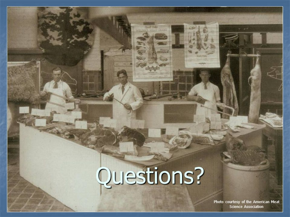 Questions? Photo courtesy of the American Meat Science Association