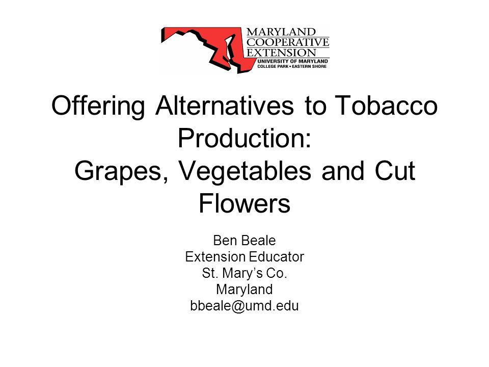 Offering Alternatives to Tobacco Production: Grapes, Vegetables and Cut Flowers Ben Beale Extension Educator St.