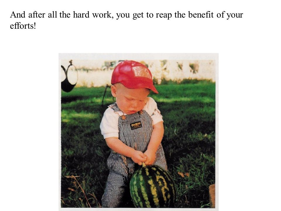 And after all the hard work, you get to reap the benefit of your efforts!