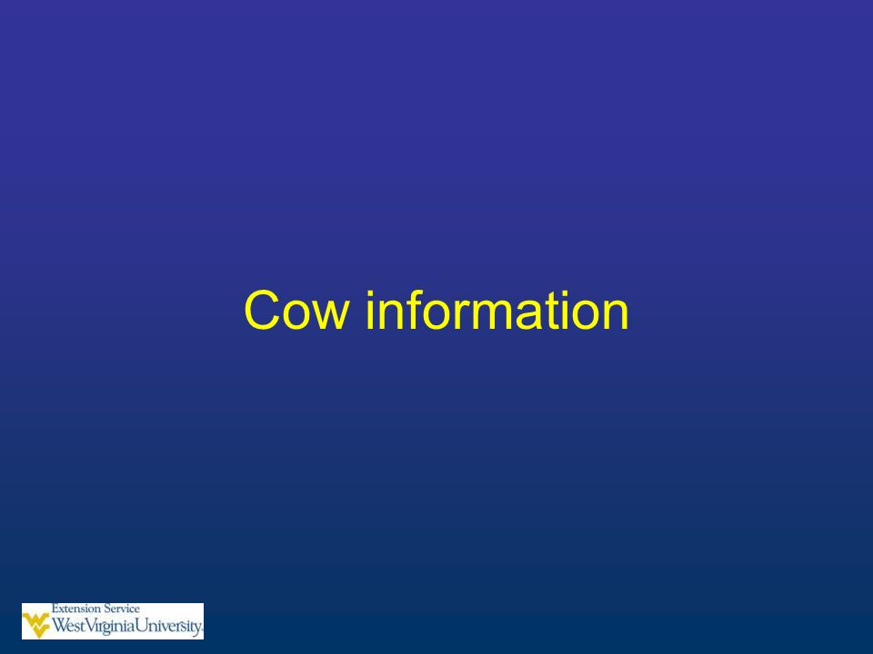 Cow information