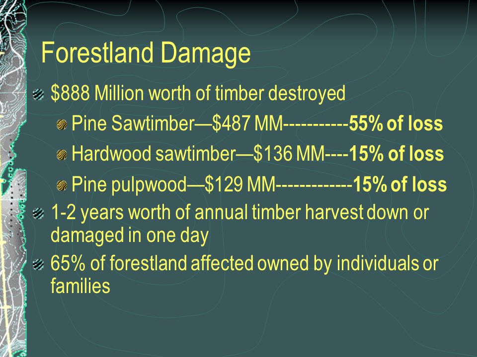 Forestland Damage $888 Million worth of timber destroyed Pine Sawtimber$487 MM----------- 55% of loss Hardwood sawtimber$136 MM---- 15% of loss Pine pulpwood$129 MM------------- 15% of loss 1-2 years worth of annual timber harvest down or damaged in one day 65% of forestland affected owned by individuals or families