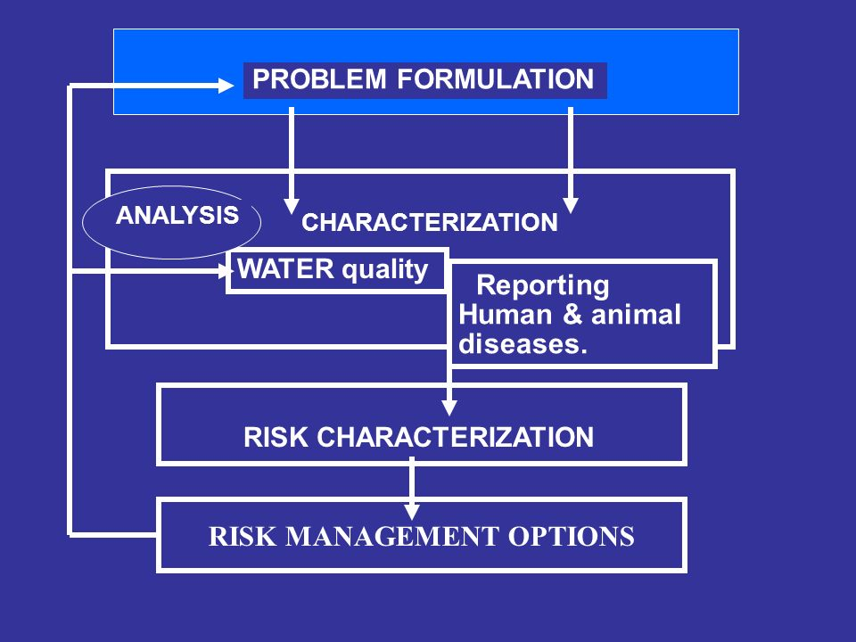 RISK CHARACTERIZATION CHARACTERIZATION WATER quality Reporting Human & animal diseases.