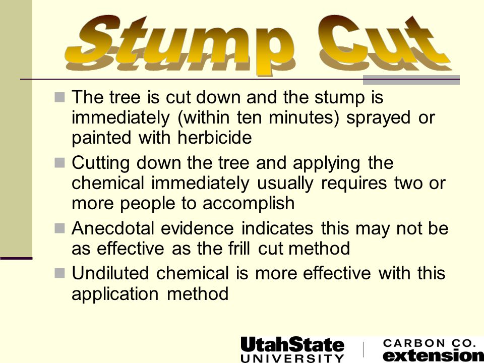 The tree is cut down and the stump is immediately (within ten minutes) sprayed or painted with herbicide Cutting down the tree and applying the chemic