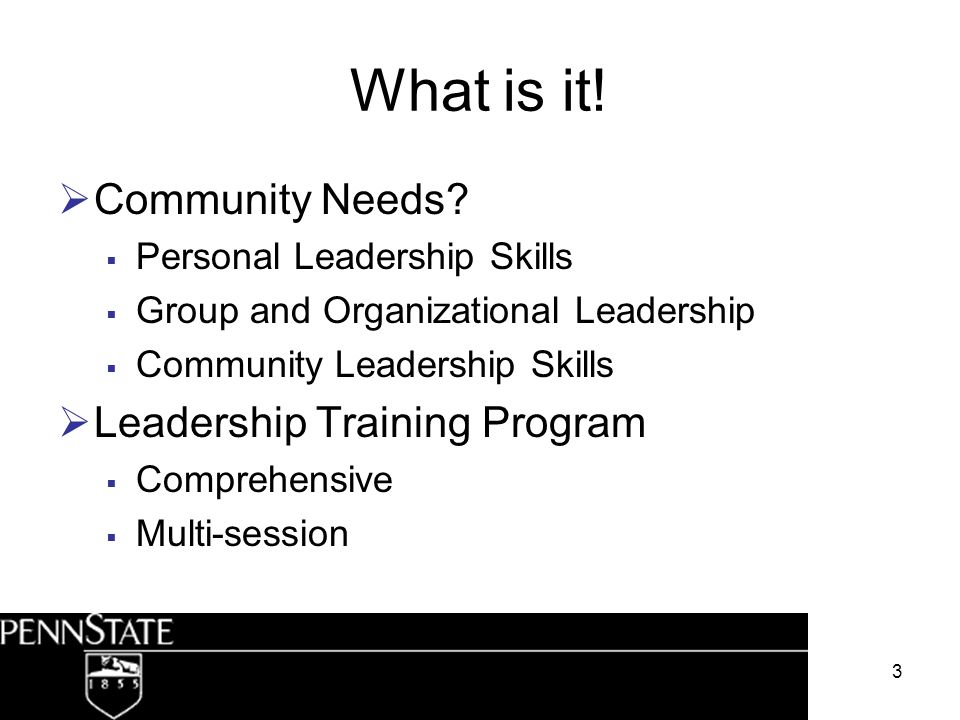 3 What is it! Community Needs? Personal Leadership Skills Group and Organizational Leadership Community Leadership Skills Leadership Training Program