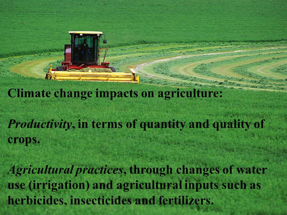Climate change impacts on agriculture: Productivity, in terms of quantity and quality of crops. Agricultural practices, through changes of water use (