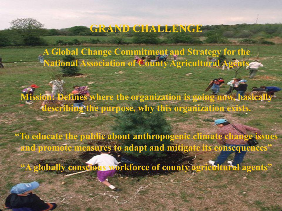 GRAND CHALLENGE A Global Change Commitment and Strategy for the National Association of County Agricultural Agents Mission: Defines where the organiza
