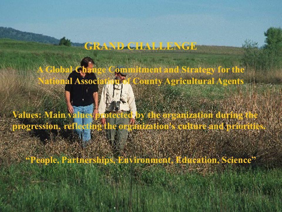 GRAND CHALLENGE A Global Change Commitment and Strategy for the National Association of County Agricultural Agents Values: Main values protected by th